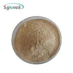 단백질 강직 효소 CAS 9014-01-1 알칼리성 프로테아제 제정성 효소 알칼리성 프로테아제