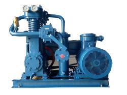 주유소를 위한 Ecotec LPG 압축기