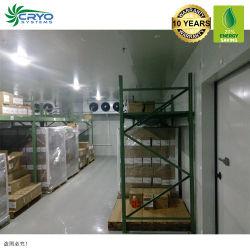 Contenitore solare Congelatore granchio Congelatore stanza vetro porta a piedi In congelatore per piselli verdi congelati