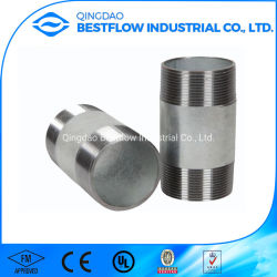 ANSIの配管の適切な炭素鋼の管のニップル