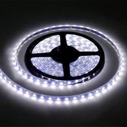 24VAC blanc et blanc chaud fractionnables de gros de la bande de lumière à LED