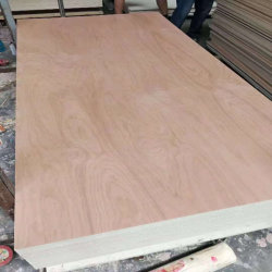 Tür-Haut MDF-/film stellte Vorstand/Handelsfurnierholz für Möbel-Aufbau gegenüber