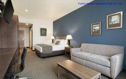 Vendita calda il più bene occidentale più gli insiemi della mobilia della camera da letto di ospitalità dell'hotel