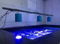 Nouveau modèle de produit breveté Marine Aquarium VOYANT LED