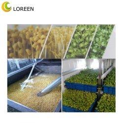 Loreen déodorant fèves germées désinfectant de dioxyde de chlore