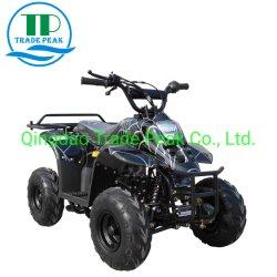 Rückdüne-Buggy ATV der übertragungs-110cc