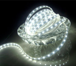 DC12V/DC24V/110V/220V 60LEDs/M 3528/2835/5050/5630/5730/3014/335 LED Strip Light LED Strip Light 3528