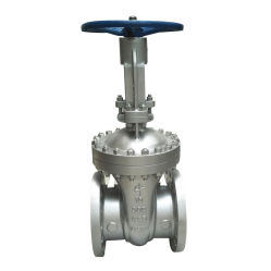 Uma válvula de retenção de flange Wcb216 (ANSI/ASTM 150lb)