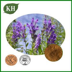 Het Uittreksel Baicalin 20%-90% van Scutellaria Baicalensis van de vervaardiging door HPLC