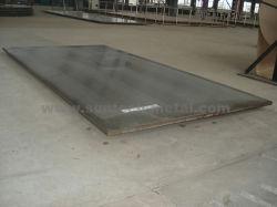 A240 Tp410 الفولاذ المقاوم للصدأ يرتدون لوحة (E20)