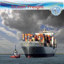 L'expédition de fret maritime FCL logistique (transport maritime / fret Agent)