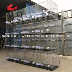 Racing ячейки металлические отсек для размножения в птицеводческих ферм