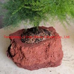 Leichter natürlicher vulkanischer Flowerpot-Lava-Poliermittel-Pflanzer