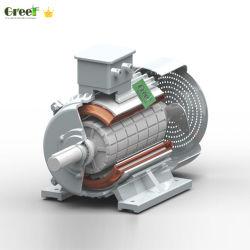 De lage Generator van de Magneet van T/min Permanente 1kw - 5000kw
