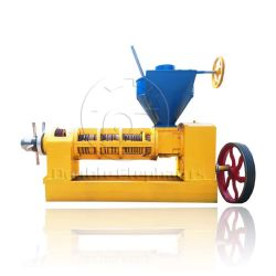 سعر المصنع Sunflower Soybean Peanut Palm CottonSeeds Oil Press