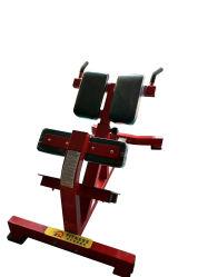Equipos de gimnasio pesas libres silla romana extensión Volver