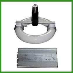 40W-400W de magnetische Lichte Buis van de Inductie van de Lossing Electrodeless met E40