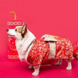 Jantes Kimono Floral Pet Dog Traje estilo japonês com roupas da moda Bowknot16272 ESG