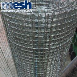 Bird Cage en acier galvanisé de haute qualité Treillis soudés pour la vente