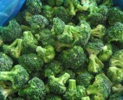 Brócolos Verduras congeladas provenientes da China