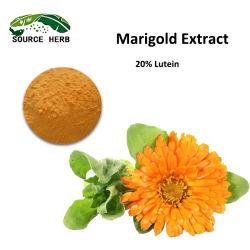 زراعة طبيعية ماريجولد استخراج Lutein 5%-98% Marigold زهرة استخراج