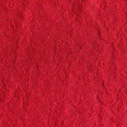 140GSM de nylon Stof van het Kant Spandex voor Innerwear/Ondergoed/Lingerie
