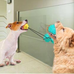 كلب مضغ إلى [تنتّر] نشطة [سكي] كلب فرشاة الأسنان Toys كلب متينة أسن ينظف لعب لكلاب صغيرة متوسّطة جرو
