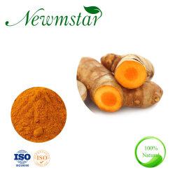 El extracto natural de CÚRCUMA CÚRCUMA Extracto de raíz de un 95% de la curcumina Extracto de Cúrcuma Longa