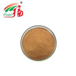 고품질 로터스 잎 추출 2% Nuciferine