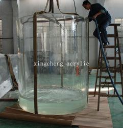 El acuario de agua dulce cilíndrico acrílico personalizado