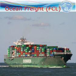 Ocean Agente Marítimo, Serviço de Logística Internacional de Toronto, Montreal