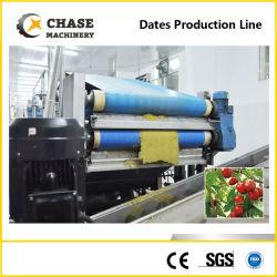 Blaubeere-Püree-Saft-Produktion, die Zeile bildend aufbereitet