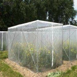 Gezi Gemüsepflanze schützen Netz 2× 10 M Insektenschutznetz Garten Feinmaschennetz für Gemüse, Pflanzen, Obst, Blumen, Pflanzen