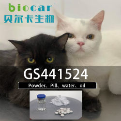 Großbritannien Lager GS-441524 Nucleosid Analog Wet FIP Cat/Dry FIP Cat 1191237-69-0