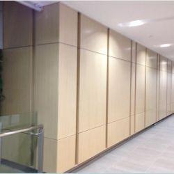 Mur rideau métallique en aluminium personnalisé du panneau de revêtement intérieur / extérieur décoration