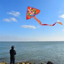 Los niños decoración regalo Dragon Kite Kite personalizada a los niños juguetes promocionales