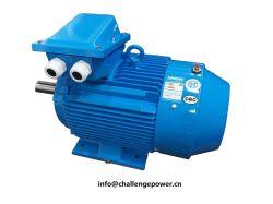 팬 모터 또는 Pulverizer (석탄 선반) 모터 펌프 모터 발전소