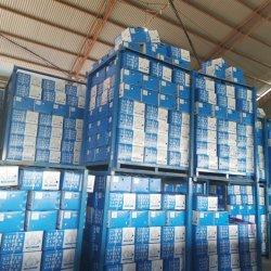 5.5Cm 6,0 cm 5 cm de ajo blanco puro de la fábrica el precio de venta caliente