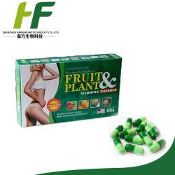 Usine de fruits à base de plantes naturelles&slimming capsule la perte de poids
