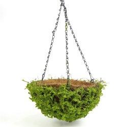 Natural mayorista de Plantas artificiales Cesta Colgante con el precio de fábrica