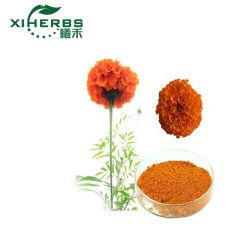 أصناح استخراج طبيعي من النبات مايجولد مستخرج لطنين 5% -80%، زياكسانثين 5-98%