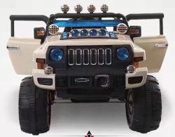 新しいデザイン大きいサイズの赤ん坊の電気自動車、RC車、車のおもちゃ5688