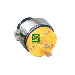 Stecker Und Steckdose Nach Amerikanischem Standard Für Elektrische Energie