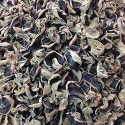 Blanc sec champignon noir coupes de bois séché oreille