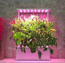 Drop Shipping Premium de alta calidad jardín interior Maceta Hidroponía Entrega