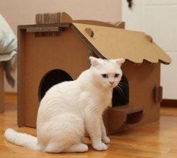 Regali promozionali dei bambini della decorazione della casa del playhouse del cartone del giocattolo educativo degli animali domestici