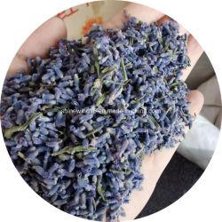 최고의 허브차 말린 라벤더 꽃