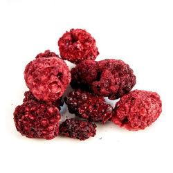 Congelar Jamun Preto secas/Blackberry Indiano 100% frutas naturais