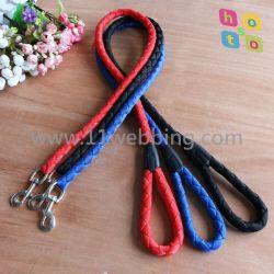 De gevlechte Nylon Kabel van de Opleiding van het Huisdier van het Lood van de Leiband van de Hond van de Singelband