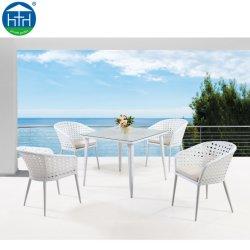 L'extérieur jardin Meubles en rotin Table et chaise en rotin Ensemble de salle à manger